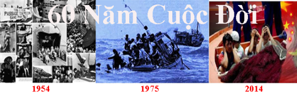 1954-2014