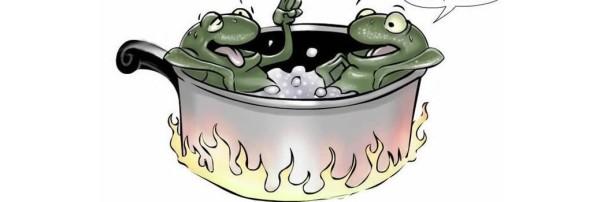 boiledfrogscol