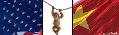 VietMy-duday-danlambao